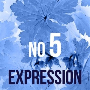 Essence Expression No 5, Perfume