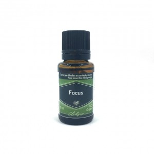 Focus, complexe diffuseur